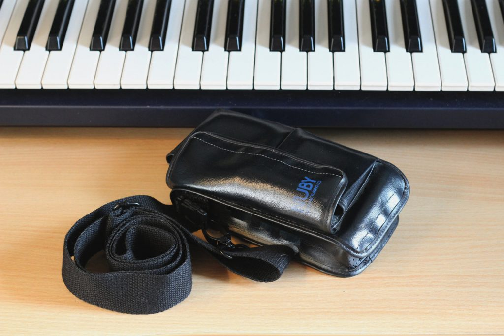 Tascam GameBoy carry case closed